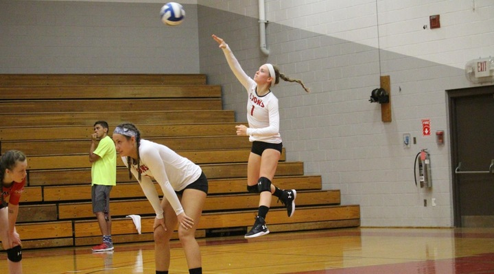 Women's Volleyball Absorbs Loss to Curry, Bounces Back to Top Bay Path