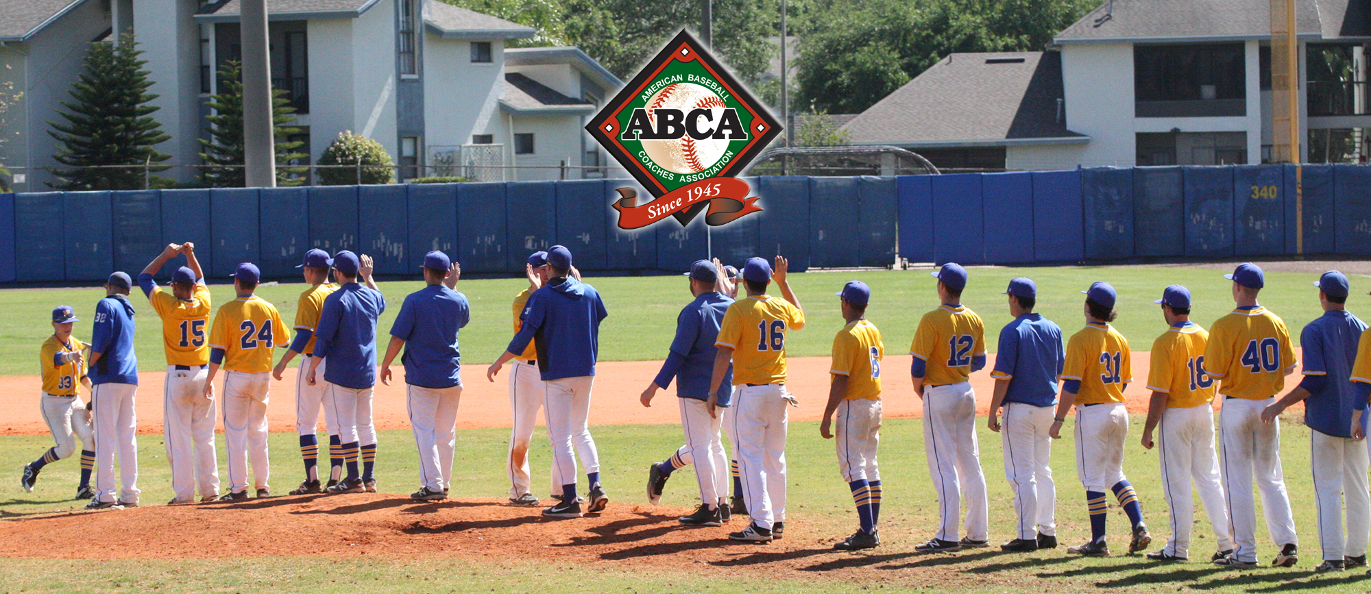 Golden Bears Break into ABCA National Poll at No. 28