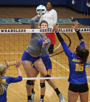 Volleyball Splits Pair Of Matches To Close Out Home Tournament