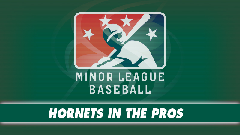 TEN FORMER HORNETS BEGIN MINOR LEAGUE BASEBALL SEASONS