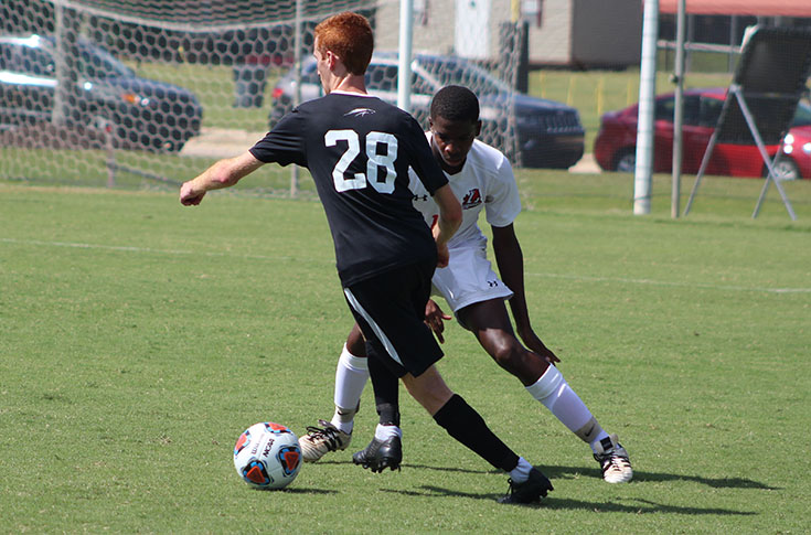 Men's Soccer: Morton scores in Panthers' USA South opener against William Peace