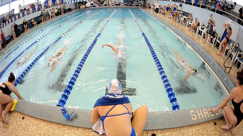Swimming and Diving Competes at Northeastern, Durham Qualifies for NCAA Zones in Diving