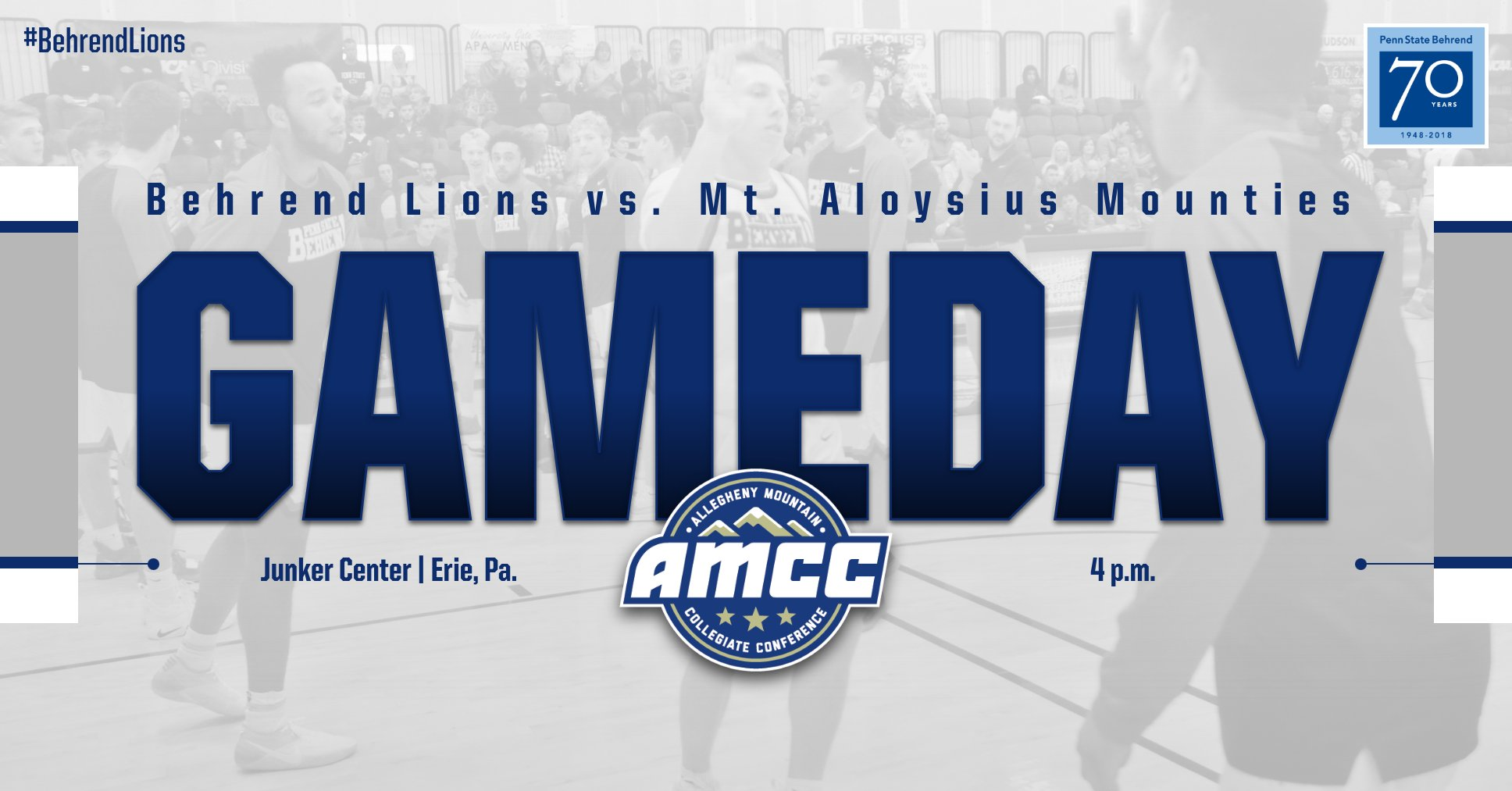 Men's Basketball Hosts Mt. Aloysius on Sunday