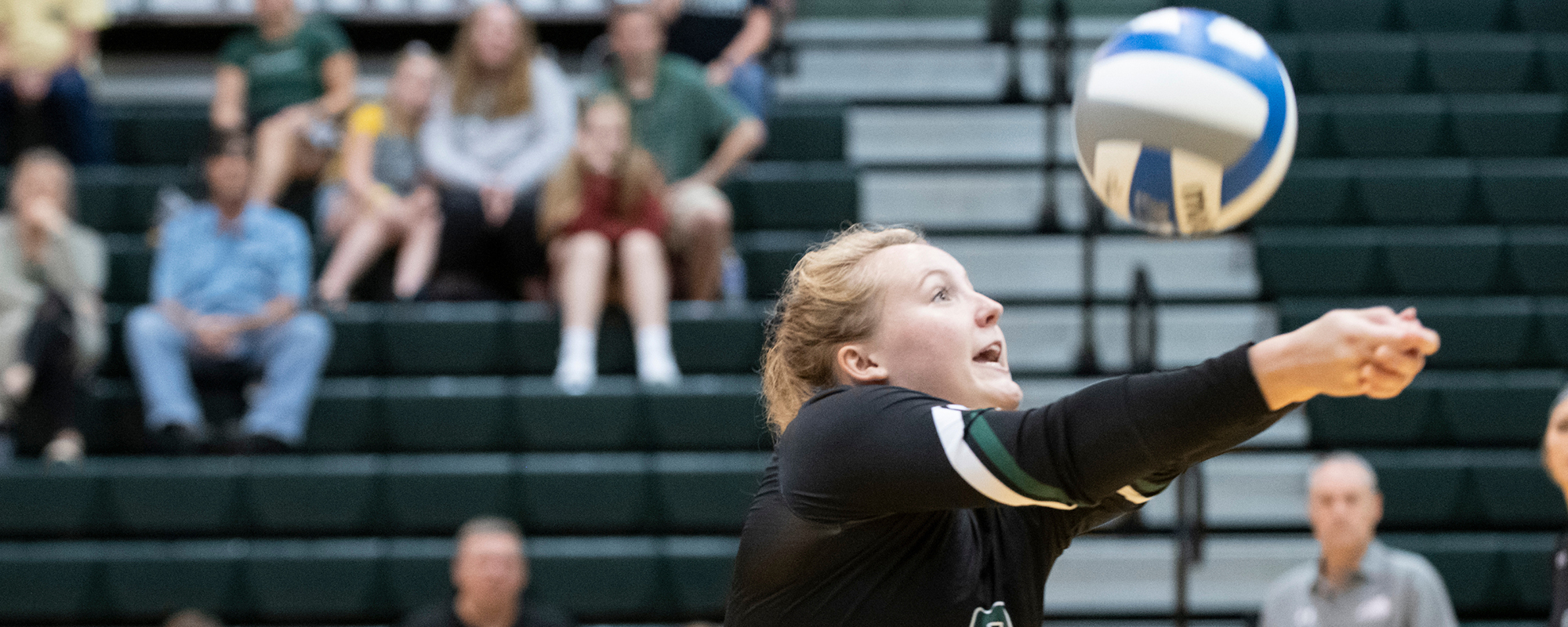 Mustangs Remain Perfect, Sweep St. Mary's, Union