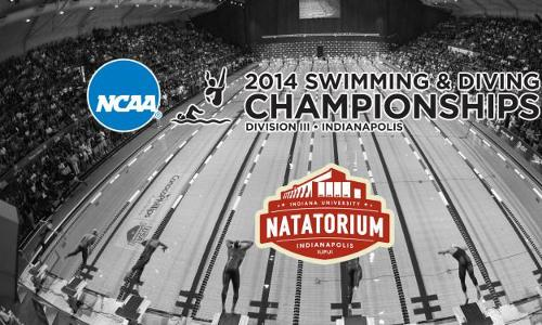 A Trio of Eagles Prepare for NCAA Swimming & Diving Championships This Week