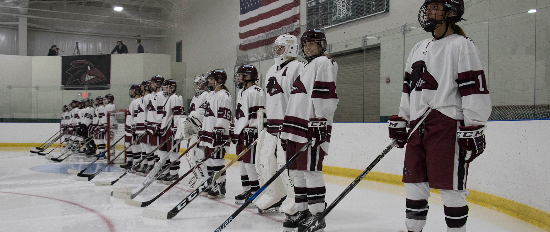 Women's Ice Hockey Downed at Saint Anselm, 8-2