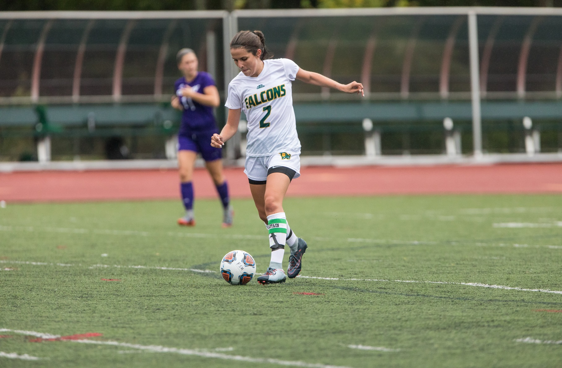 Falcons Edged By Huskies, 3-1