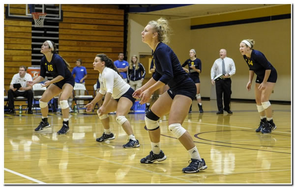 Lions' women's volleyball claims 3-0 win over Hanover College on Senior Night