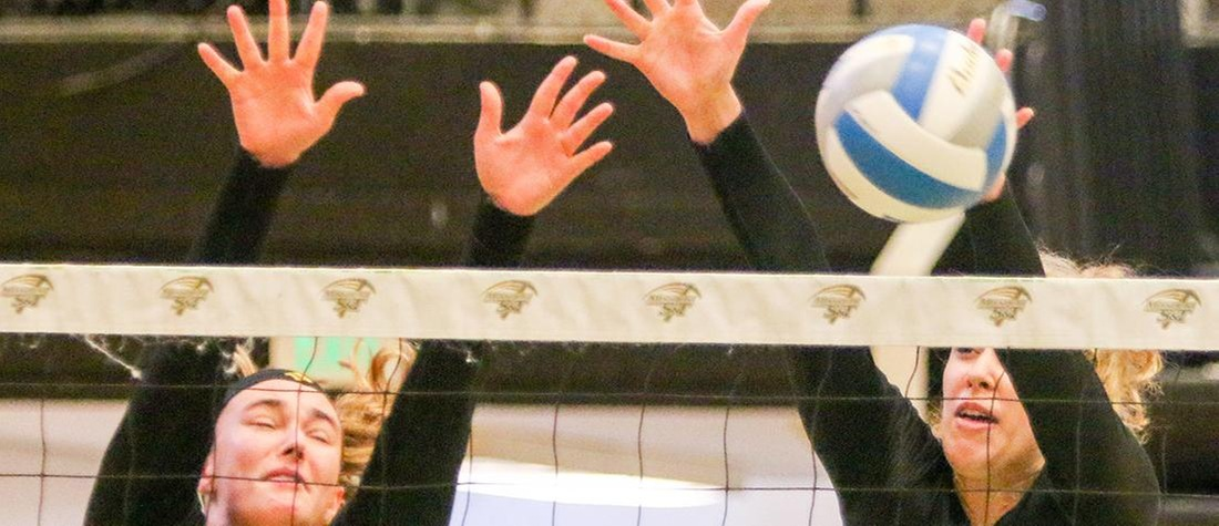 Volleyball Suffers Sweep At Hillsdale