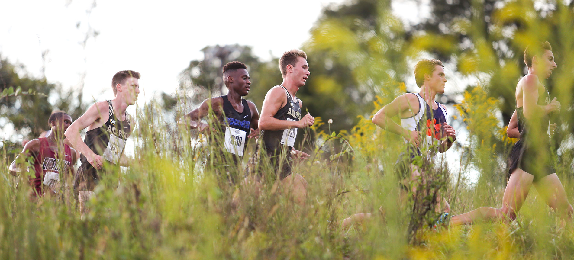 Men's Cross Country Claims Fifth Place at NCAA Southeast Regionals