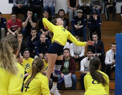 ACAC Women's Volleyball Championship Preview