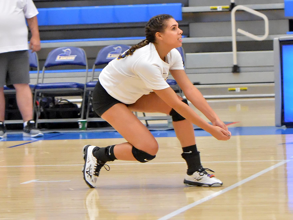 Women's Volleyball Earns Two Wins Against Fitchburg State and Wentworth