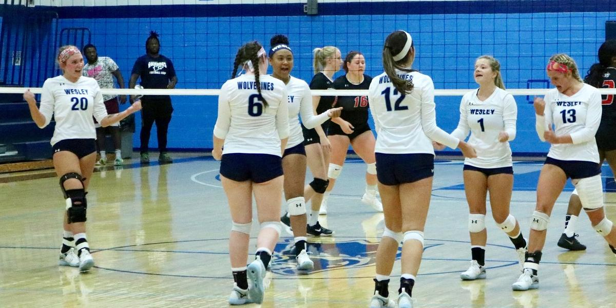 Lady Wolverines Secure 3-1 Road Win at Hood