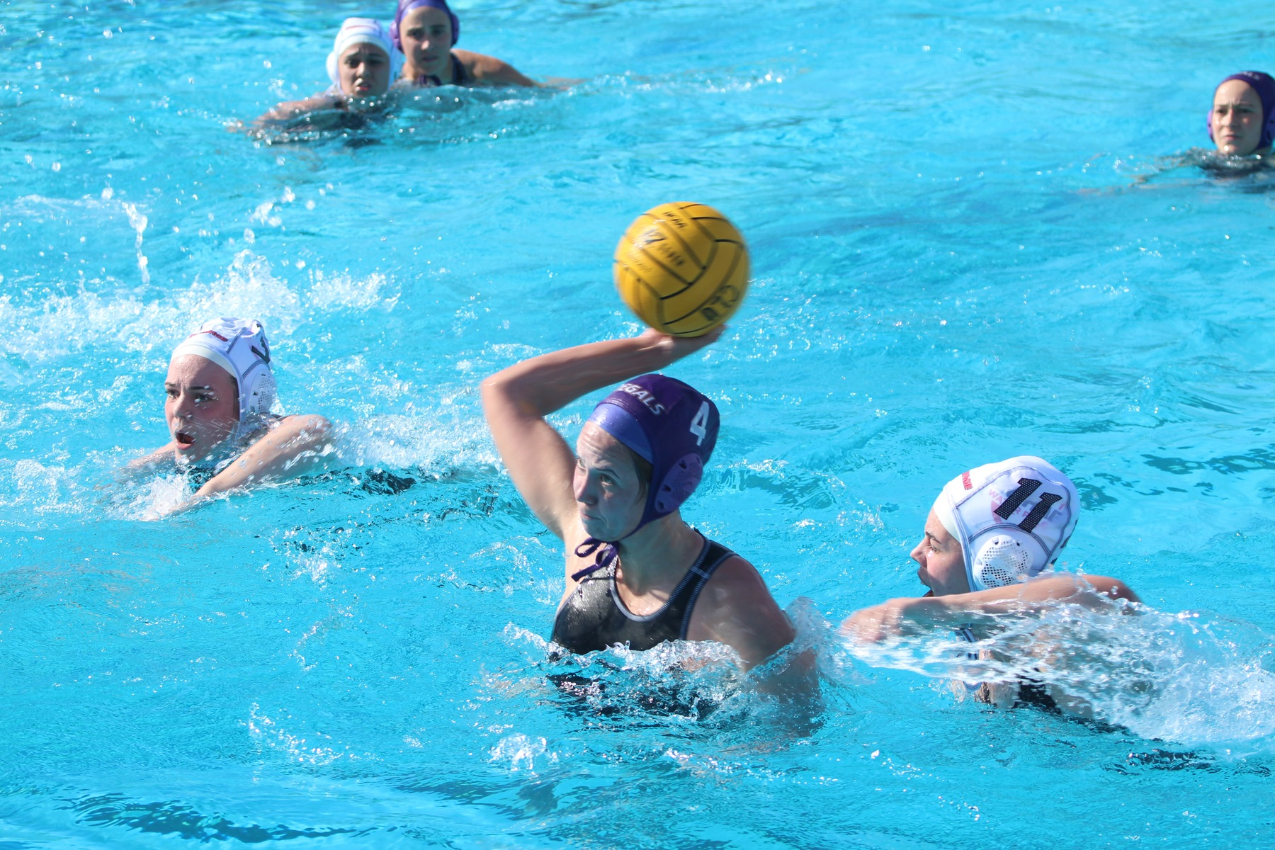 Regals Host Eleventh Annual Women's Water Polo Tournament