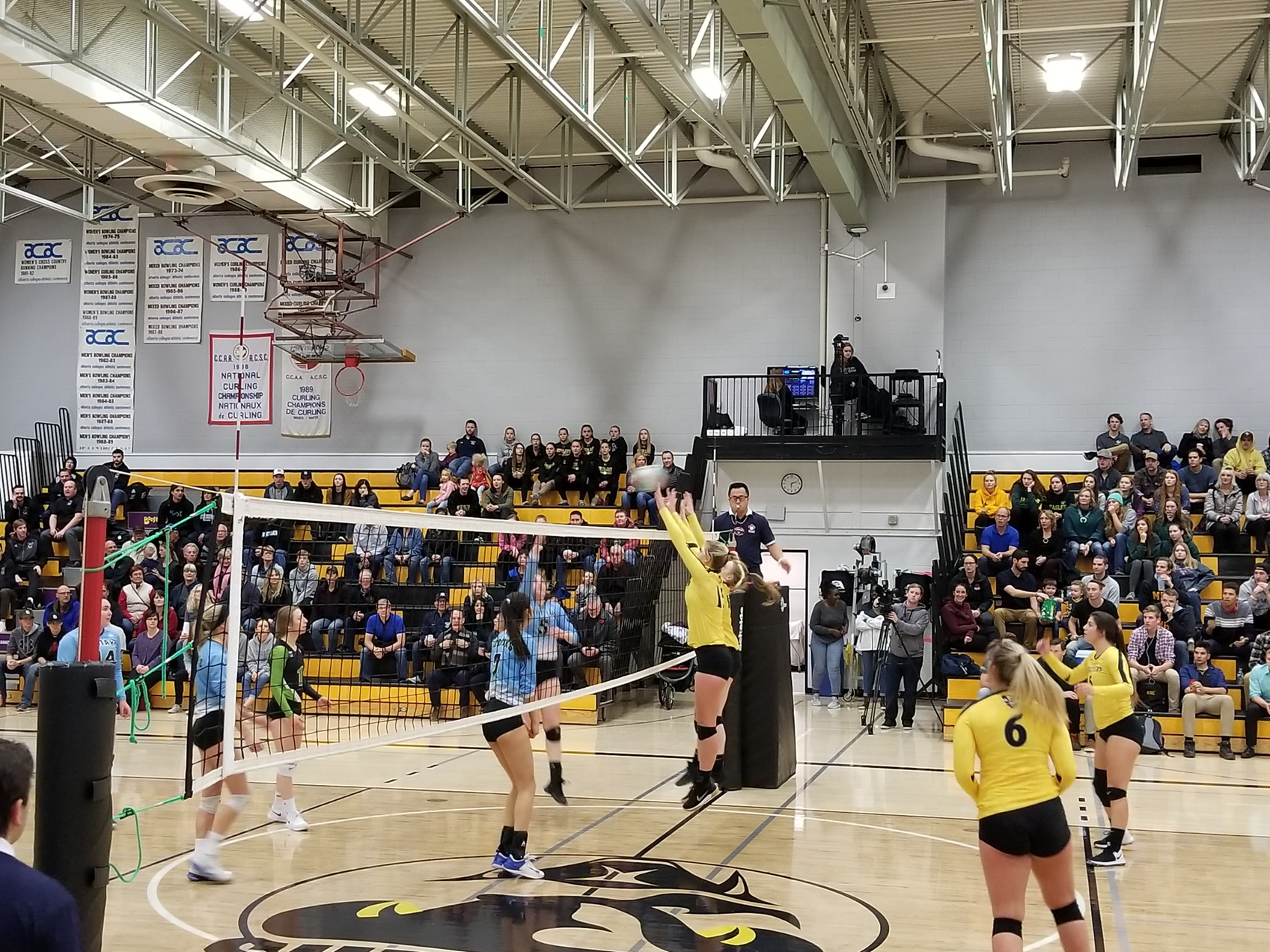 Rattlers Sweep Kodiaks in the Snake Pit