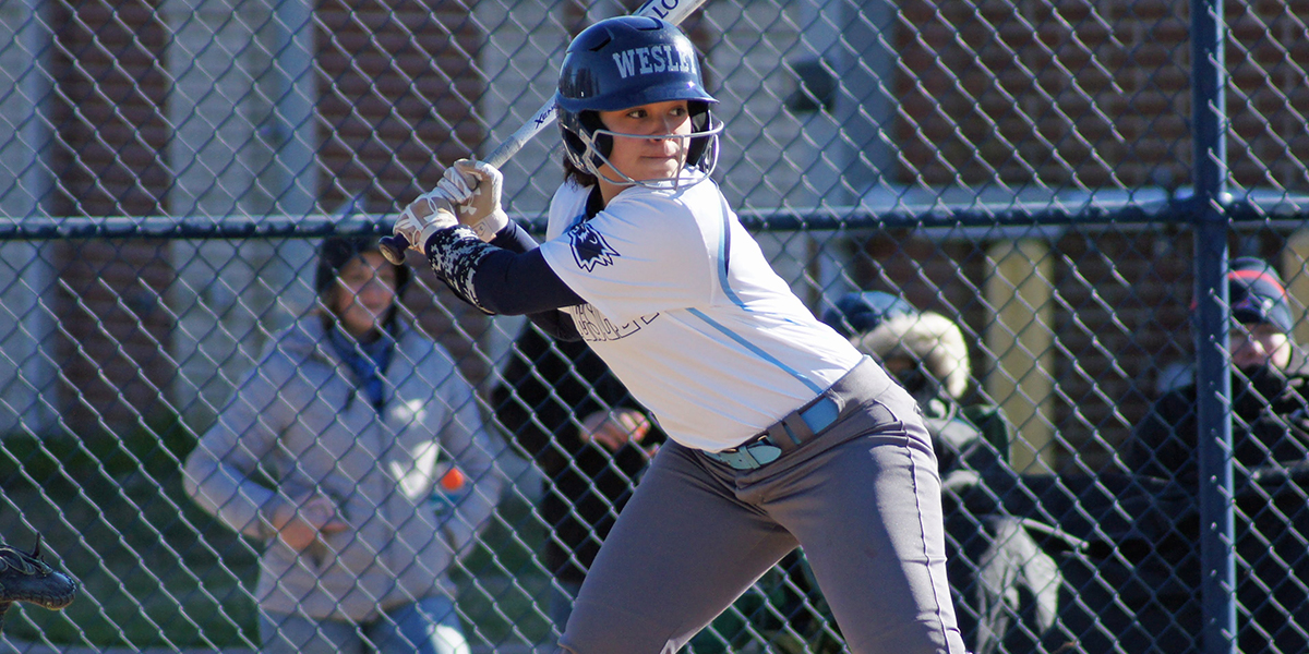 Three different Wolverines homer as softball competes with Penn St.-Brandywine