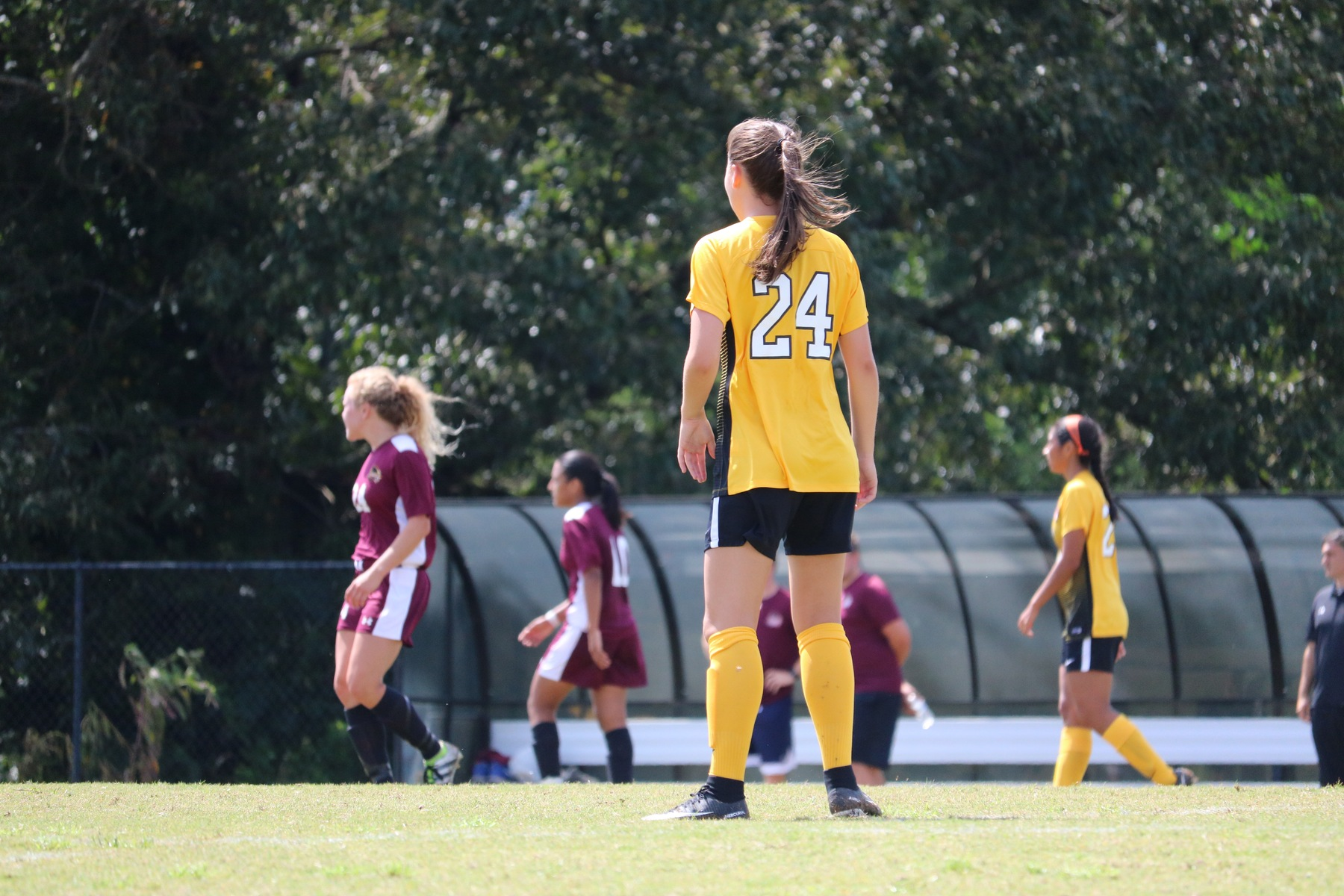Women's Soccer Falls to Newberry