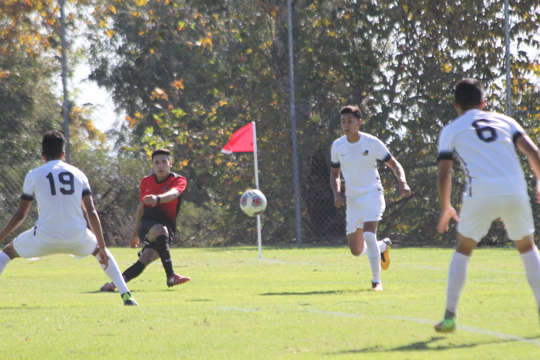MEN TIE EL CAMINO AT HOME