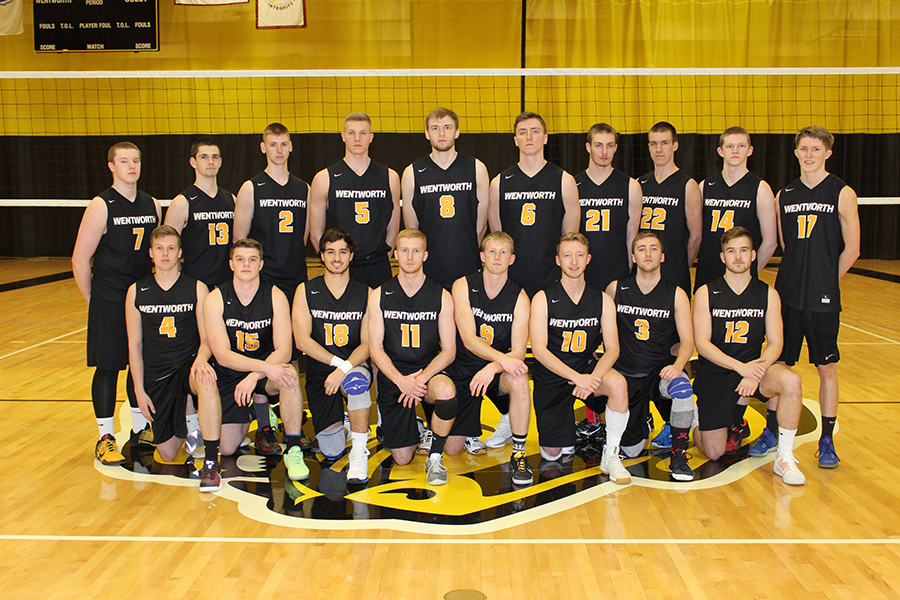 Men's Volleyball Oulasted by New Paltz in NCAA Semifinals