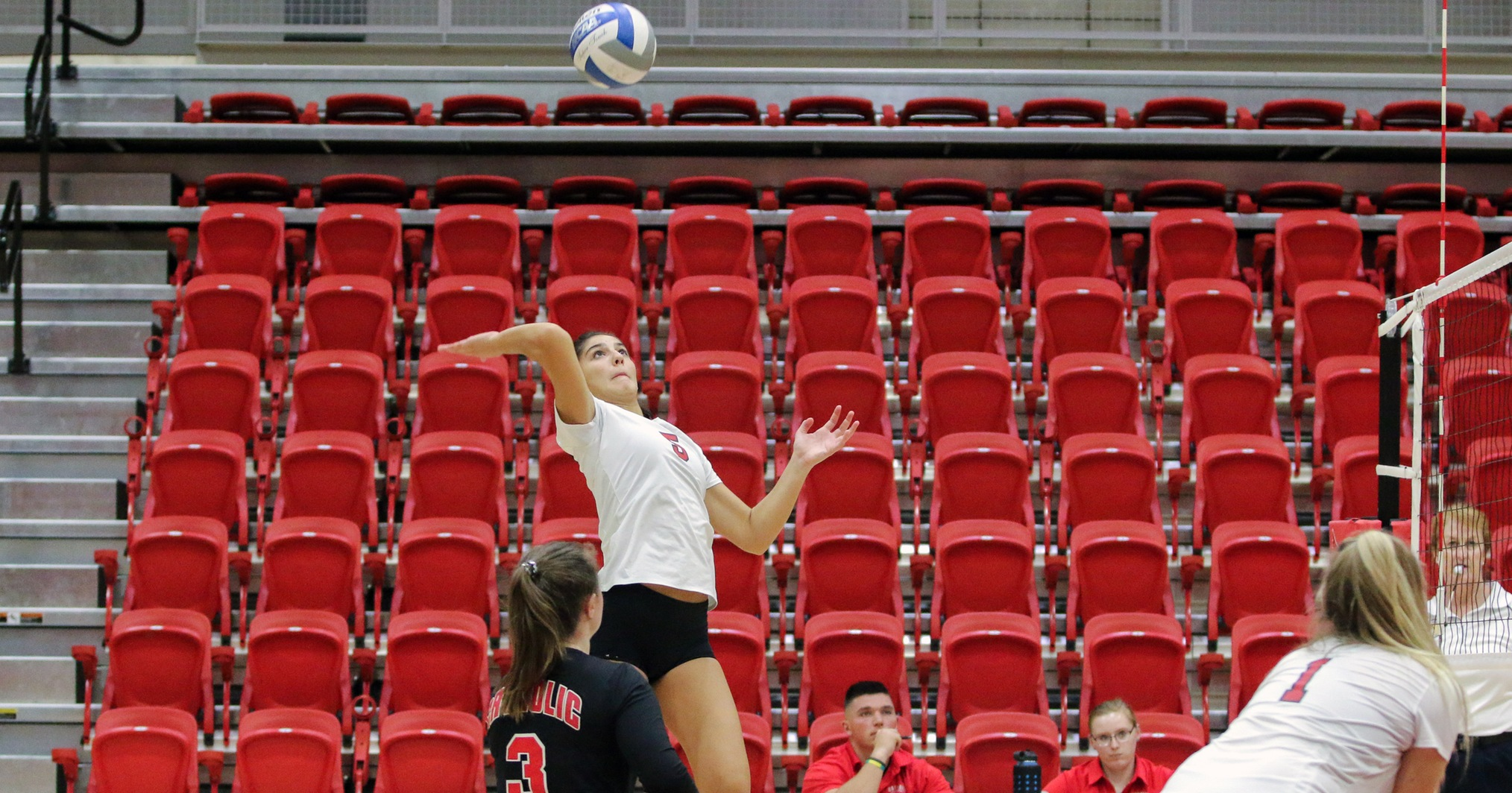 Cardinals Move Into Second Place With Sweep at Goucher
