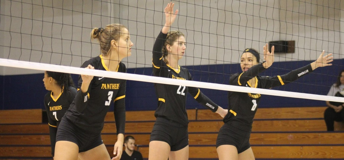 Volleyball Finishes Road Trip At Davis & Elkins