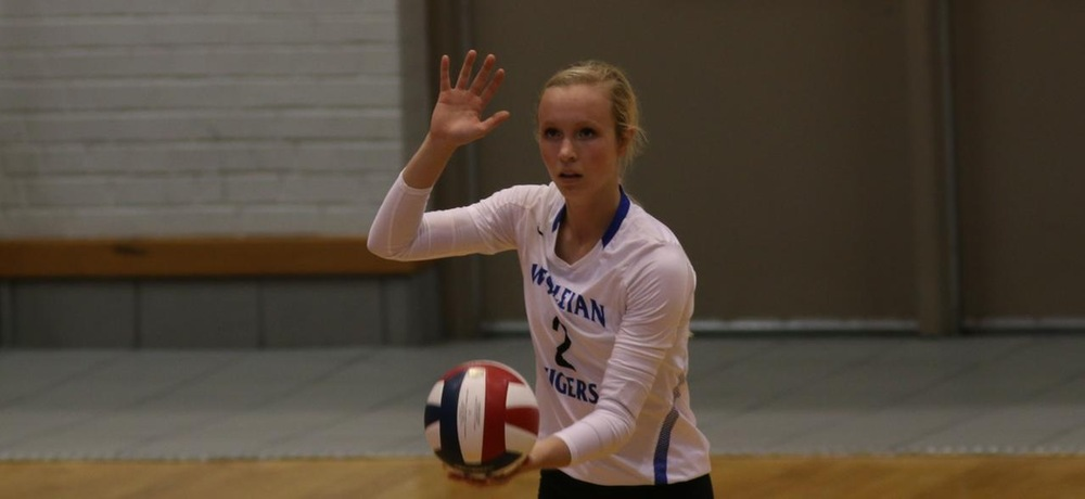 Tiger volleyball adds 10th win on Saturday, Knobbe notches 500th career assist