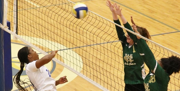 The Lady Gator Volleyball Team Splits Non-Region Games