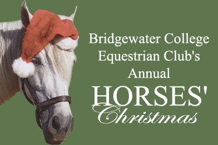 Riders Entertain Community With Horses' Christmas