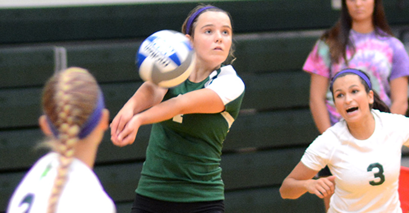 Harting with career-high digs in loss
