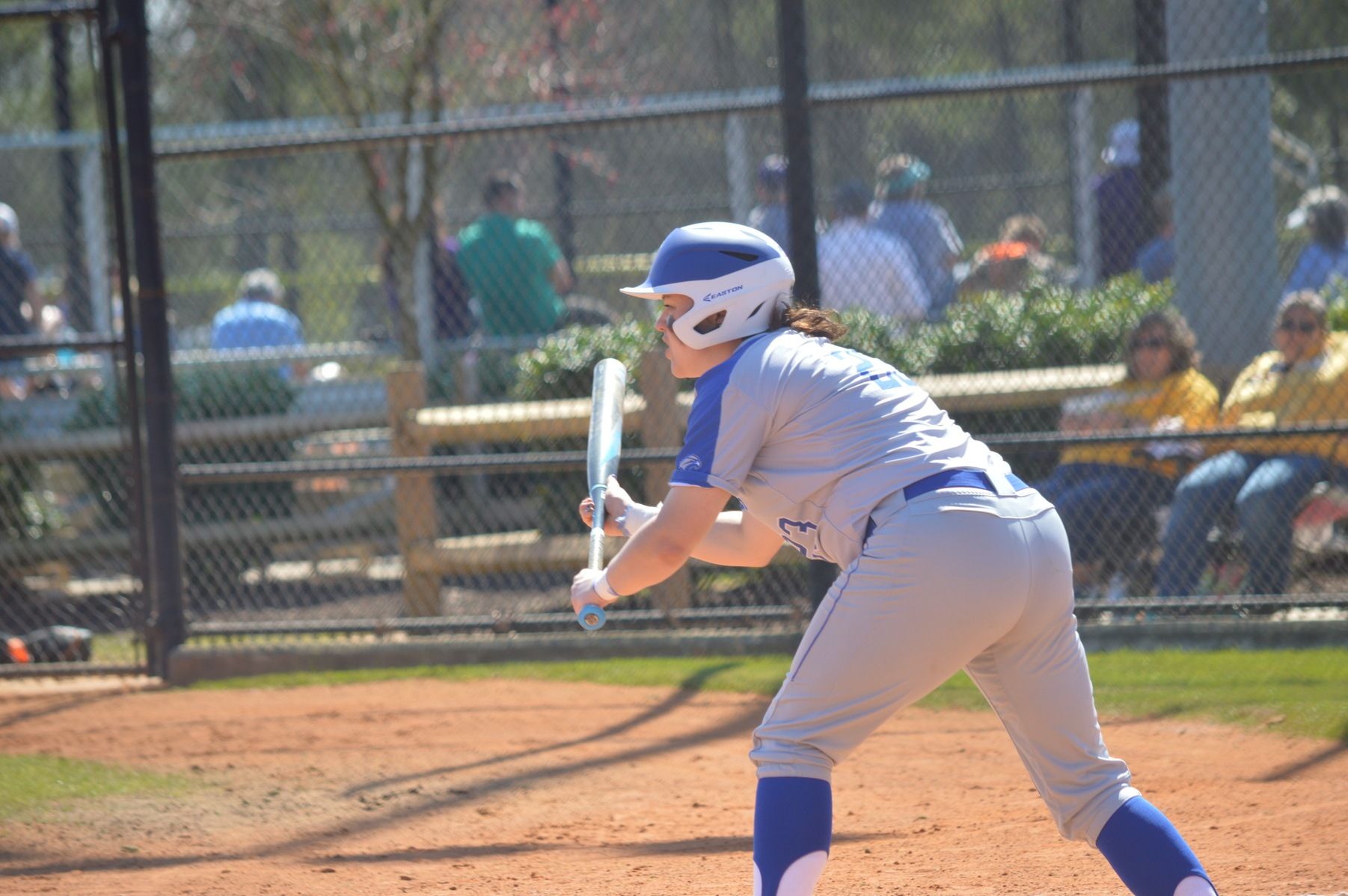 Falcon Softball Takes Doubleheader from Brooklyn College