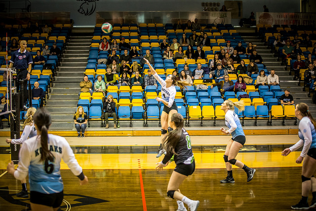 WVB | Kodiaks Fall to The Lions in 5 Sets