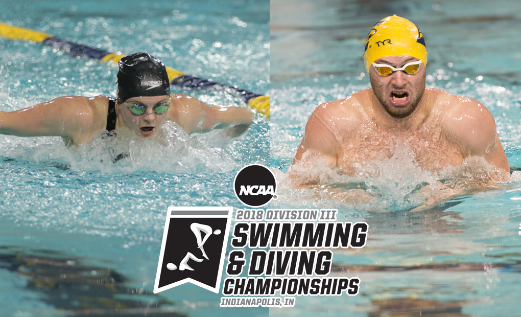 Eagles Travel to Indy Looking to Defend NCAA Swimming & Diving Titles