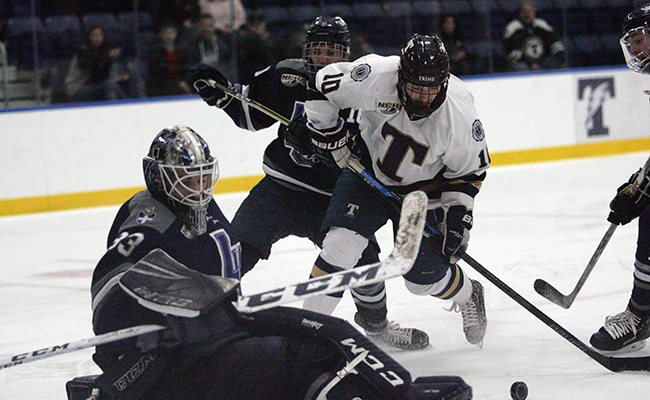Men's Hockey Defeated by Nationally-Ranked Bulldogs