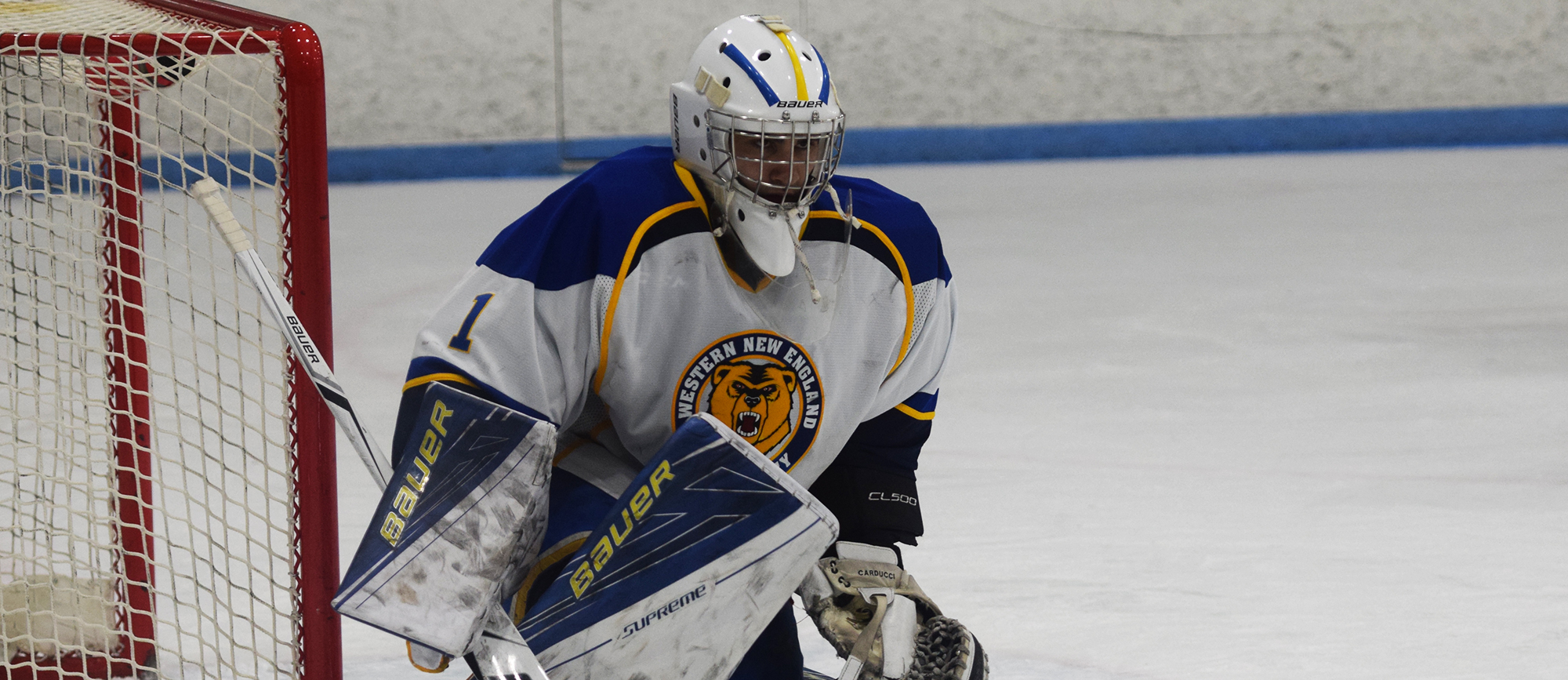 Sophomore Kyle Carducci made six saves in Western New England's 6-3 loss at Becker on Thursday. (Photo by Rachael Margossian)