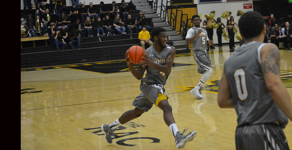 Sparrow Nets 17; UMBC Falls, 65-53, to Central Conn. St. on Wednesday