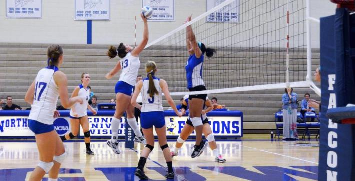Volleyball sweeps Concordia Chicago in home finale