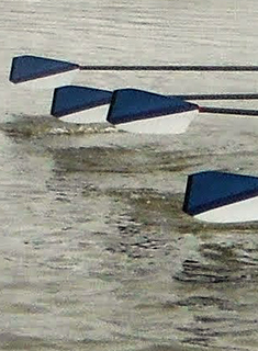 Wellesley Crew Finishes 2nd at the Snake Regatta