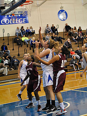 Women's Basketball: Lady Wildcats Fall Short of an Upset Against PSU Brandywine
