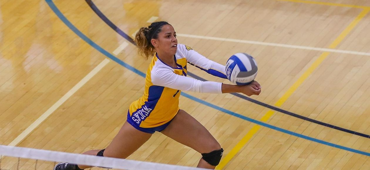 No. 20 JWU Women's Volleyball Blanks Blue Jays 3-0