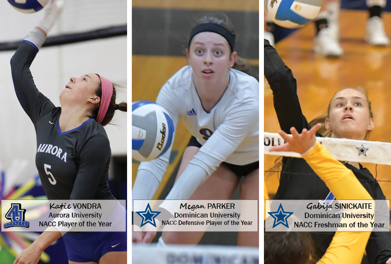 The NACC has announced its major awards and all-conference teams for the 2018 women's volleyball season. All awards are voted on by the league's head coaches.