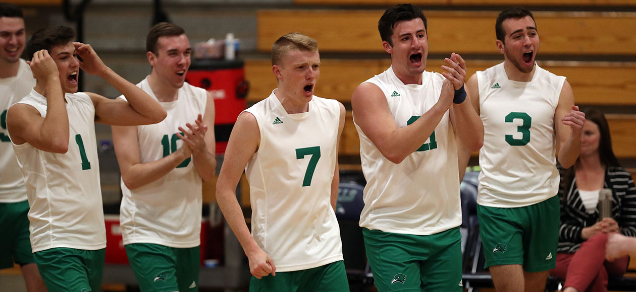 The Endicott men's volleyball team cheers during a match.