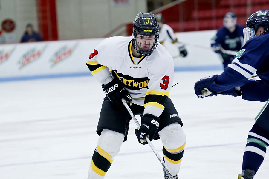 Hockey Rallies to Tie UNE