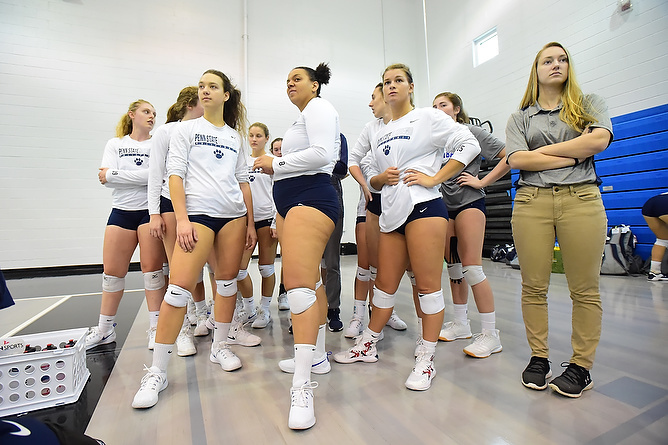 Behrend Volleyball Travels to D'Youville Tonight