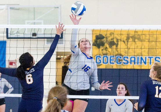 SHELOW PROPELS WOMEN'S VOLLEYBALL OVER ANNA MARIA, 3-0