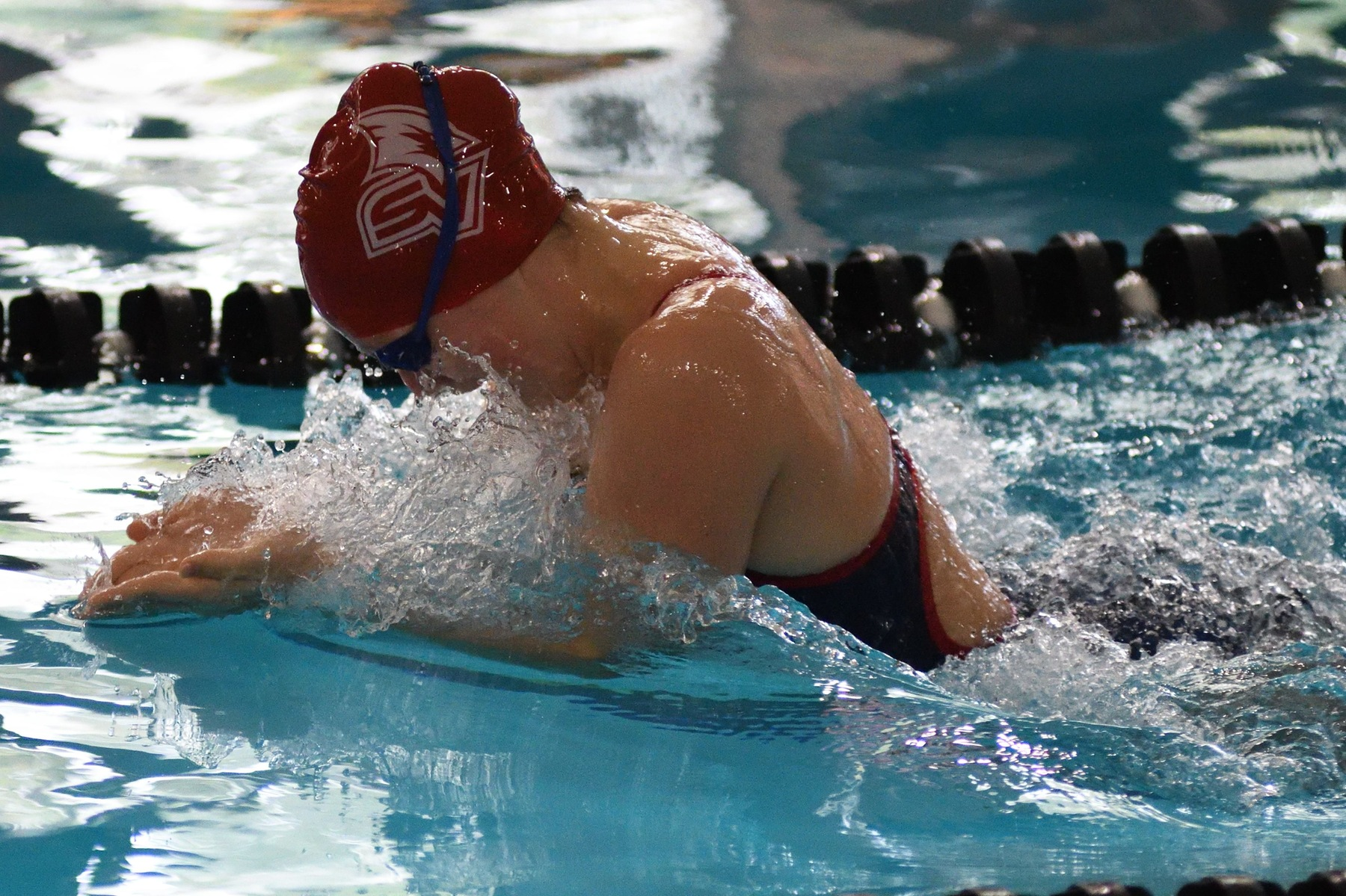 SVSU Swimming & Diving Teams Sweep Findlay in Dual Meet