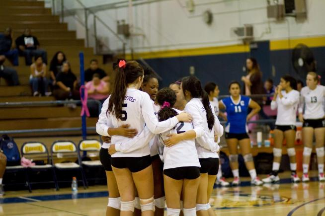 File Photo: The Falcons were defeated in straight sets by Pasadena City College.