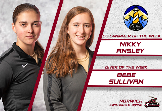 Swimming & Diving: Ansley, Sullivan Earn NEISDA Honors
