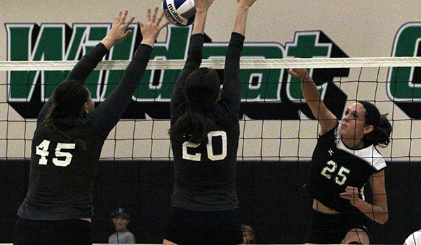 Late Rally in Game Two Allows Wilmington Volleyball to Sweep Chestnut Hill in CACC Opener
