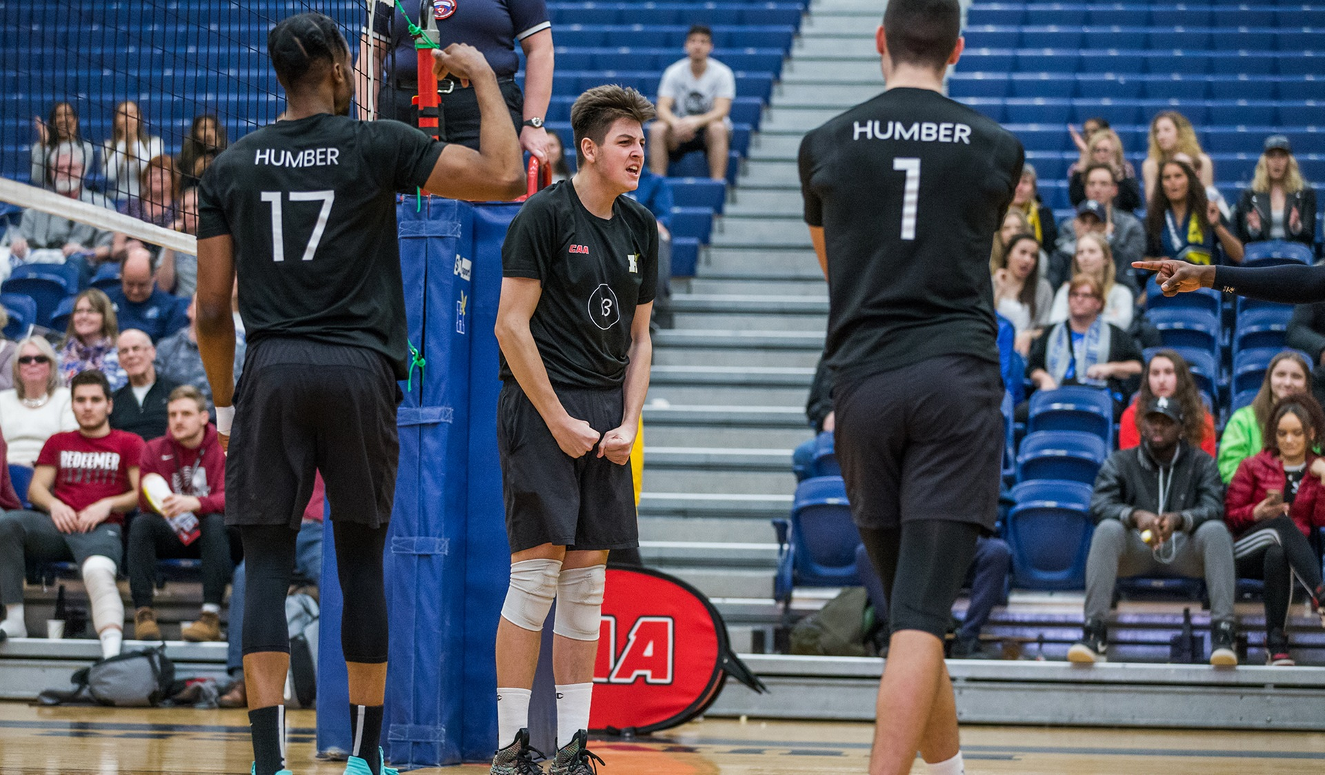 No. 5 HUMBER ADVANCES TO FINALS WITH WIN OVER NIAGARA; EARNS NATIONALS BERTH