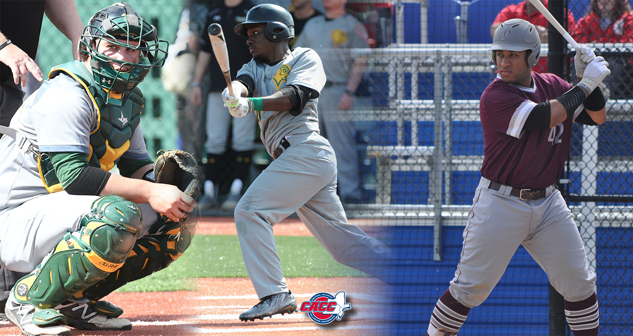 Trio of CACC Baseball Standouts Sign Professional Deals with High Desert Yardbirds